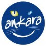 Ankara_buyuk_sehir